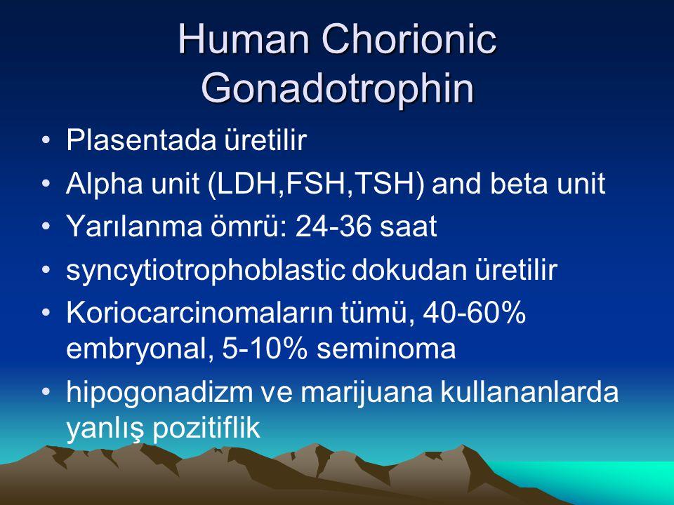 Human Chorionic Gonadotrophin Plasentada üretilir Alpha unit (LDH,FSH,TSH) and beta unit Yarılanma ömrü: 24-36 saat syncytiotrophoblastic dokudan üret
