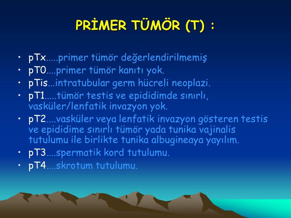 PRİMER TÜMÖR (T) : pTx.....primer tümör değerlendirilmemiş pT0....primer tümör kanıtı yok. pTis...intratubular germ hücreli neoplazi. pT1.....tümör te
