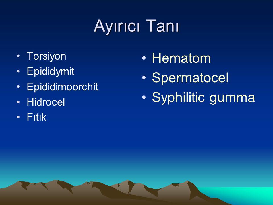 Ayırıcı Tanı Torsiyon Epididymit Epididimoorchit Hidrocel Fıtık Hematom Spermatocel Syphilitic gumma