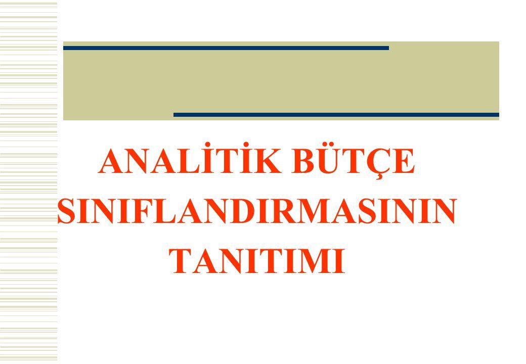 ANALİTİK BÜTÇE SINIFLANDIRMASININ TANITIMI