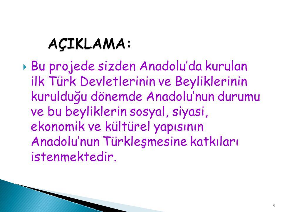  Bu projede sizden Anadolu'da kurulan ilk Türk Devletlerinin ve Beyliklerinin kurulduğu dönemde Anadolu'nun durumu ve bu beyliklerin sosyal, siyasi,