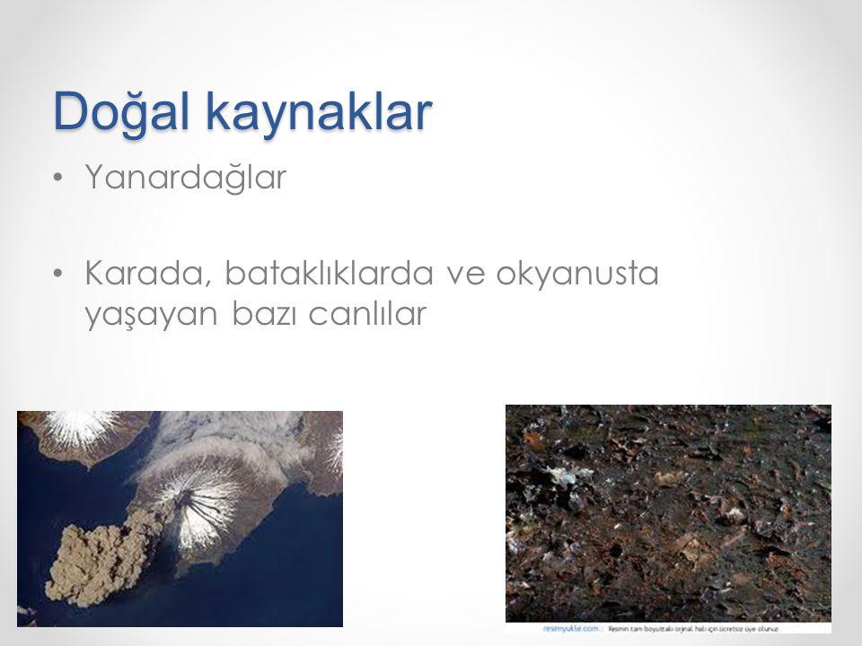 Doğal kaynaklar Yanardağlar Karada, bataklıklarda ve okyanusta yaşayan bazı canlılar