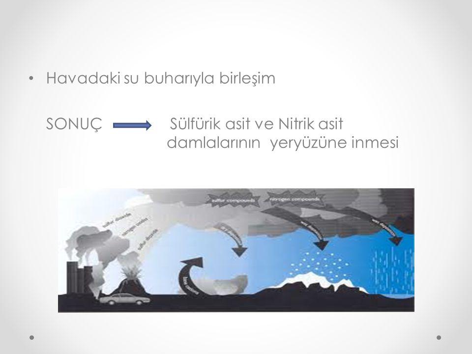 Havadaki su buharıyla birleşim SONUÇ Sülfürik asit ve Nitrik asit damlalarının yeryüzüne inmesi