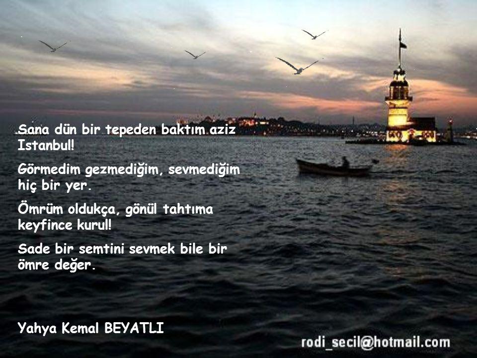 Sana dün bir tepeden baktım aziz Istanbul.Görmedim gezmediğim, sevmediğim hiç bir yer.