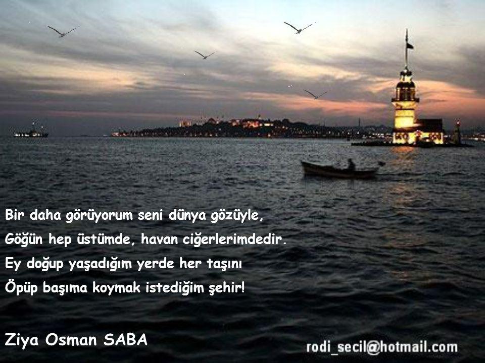 Bu ne biçim su, bu nasıl şehir Şişede İstanbul, masada İstanbul Yürüsek yürüyor, dursak duruyor, şaşırdık Bir yanda o, bir yanda ben, ortada İstanbul