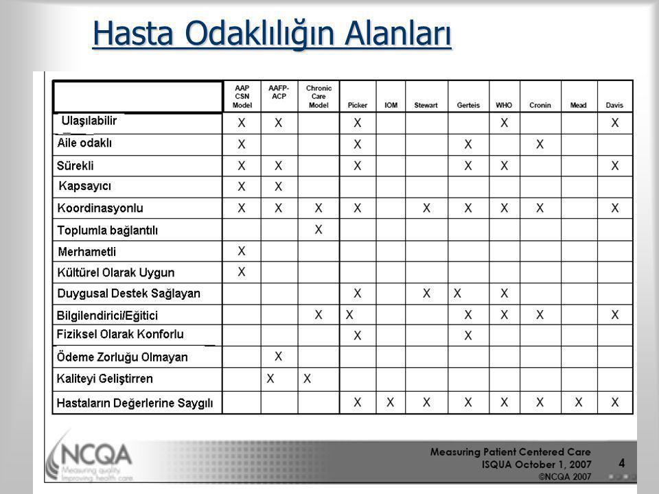 Haydar Sur Antalya Şubat 2011 Hasta Odaklılığın Alanları