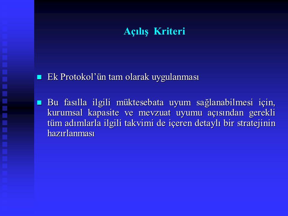 Ek Protokol'ün tam olarak uygulanması Ek Protokol'ün tam olarak uygulanması Bu fasılla ilgili müktesebata uyum sağlanabilmesi için, kurumsal kapasite