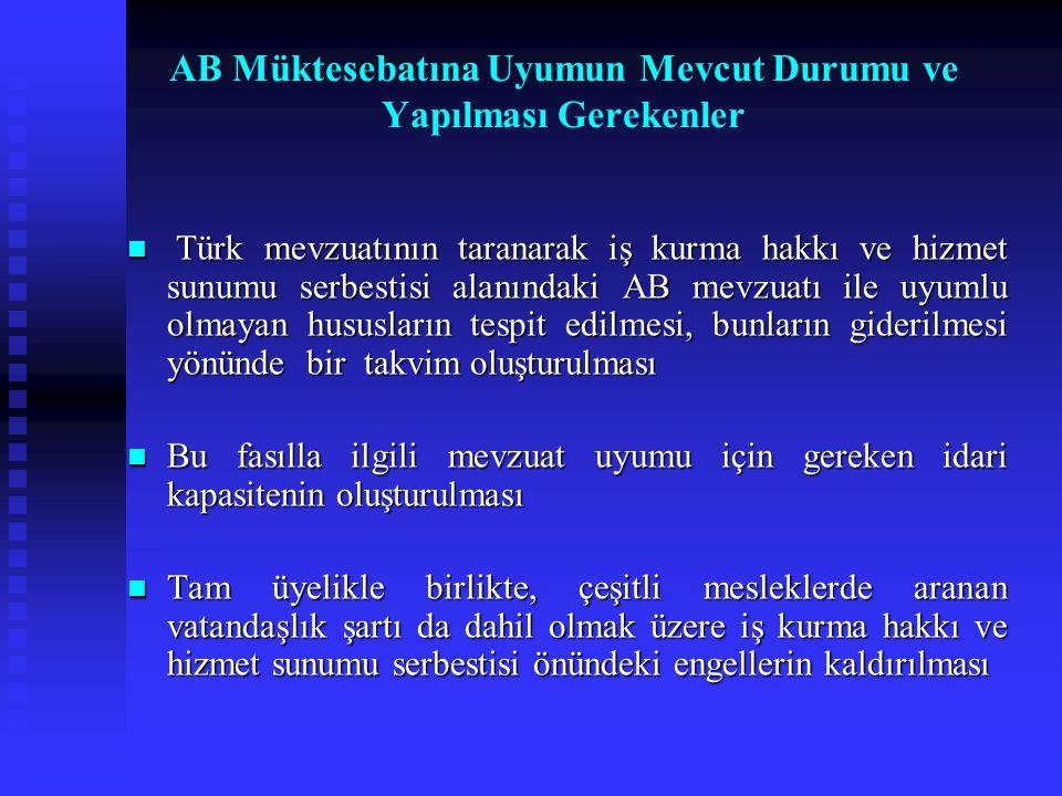 Türk mevzuatının taranarak iş kurma hakkı ve hizmet sunumu serbestisi alanındaki AB mevzuatı ile uyumlu olmayan hususların tespit edilmesi, bunların g