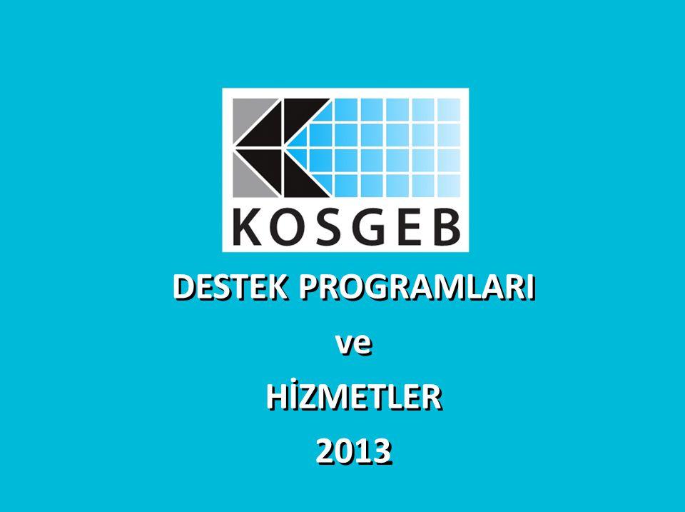 DESTEK PROGRAMLARI ve HİZMETLER 2012 DESTEK PROGRAMLARI ve HİZMETLER 2013