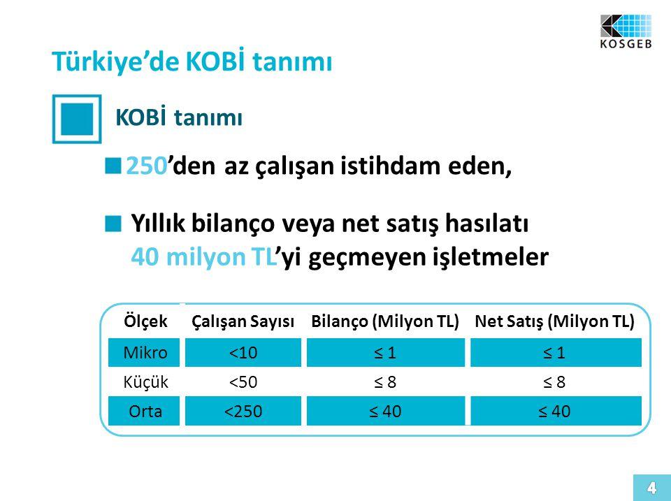 Türkiye'de KOBİ tanımı KOBİ tanımı 250'den az çalışan istihdam eden, Yıllık bilanço veya net satış hasılatı 40 milyon TL'yi geçmeyen işletmeler ÖlçekÇalışan SayısıBilanço (Milyon TL)Net Satış (Milyon TL) Mikro<10≤ 1 Küçük<50≤ 8 Orta<250≤ 40