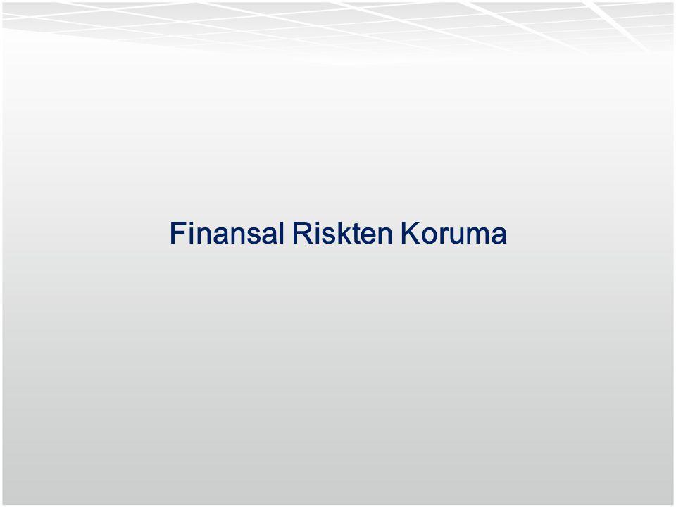 30 Finansal Riskten Koruma