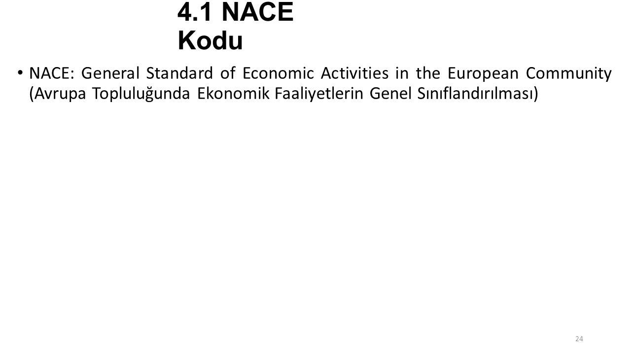 4.1 NACE Kodu NACE: General Standard of Economic Activities in the European Community (Avrupa Topluluğunda Ekonomik Faaliyetlerin Genel Sınıflandırılm
