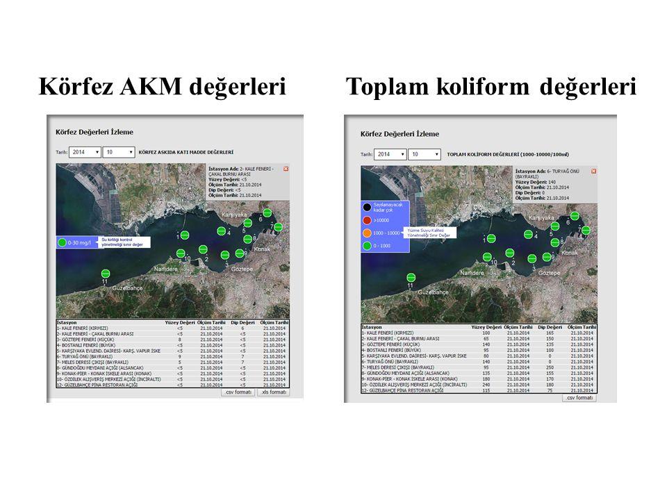 Körfez AKM değerleriToplam koliform değerleri