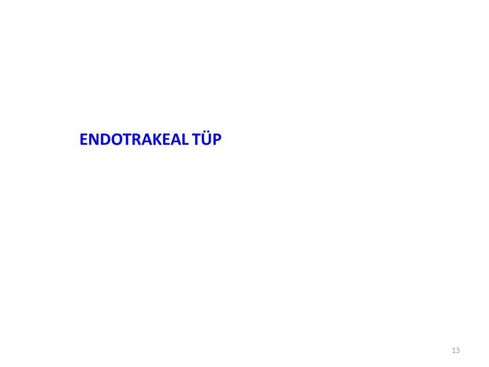 13 ENDOTRAKEAL TÜP
