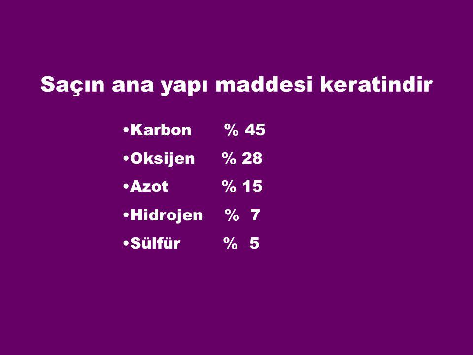 Karbon % 45 Oksijen % 28 Azot % 15 Hidrojen % 7 Sülfür % 5 Saçın ana yapı maddesi keratindir