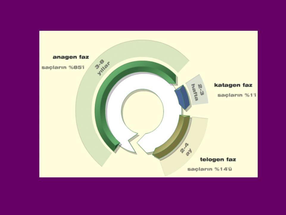 SİKATRİSİYEL ALOPESİ NEDENELERİ - 1 1.Gelişme defektleri ver herediter hastalıklar Aplazia kutis kongenita Epidermolizis bülloza(resesif distrofik tip) Epidermal nevüs Darier hastalığı 2.