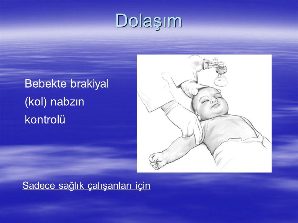 Dolaşım Bebekte brakiyal (kol) nabzın kontrolü Sadece sağlık çalışanları için