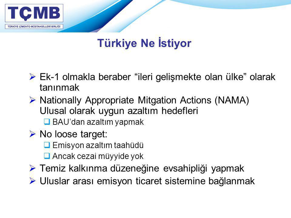 """Türkiye Ne İstiyor  Ek-1 olmakla beraber """"ileri gelişmekte olan ülke"""" olarak tanınmak  Nationally Appropriate Mitgation Actions (NAMA) Ulusal olarak"""