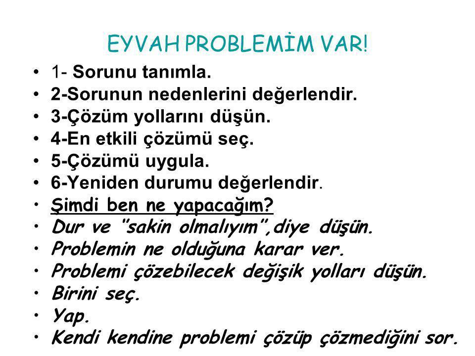 EYVAH PROBLEMİM VAR.1- Sorunu tanımla. 2-Sorunun nedenlerini değerlendir.