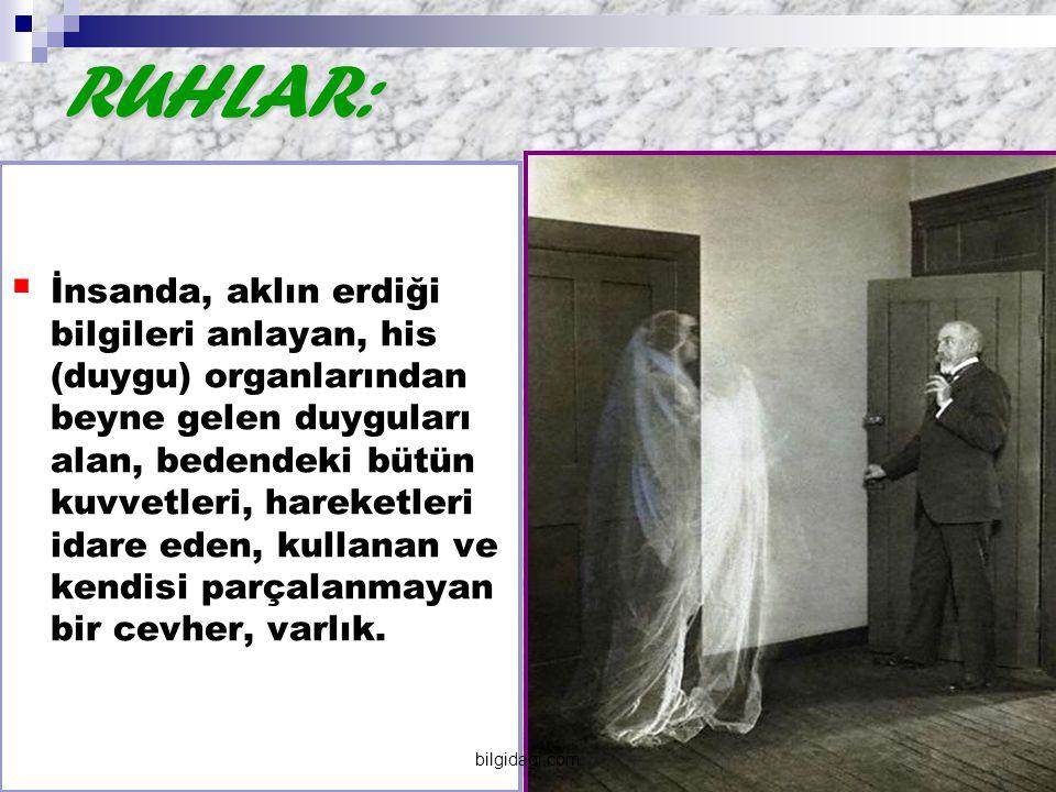 Ruh ölümsüzdür: İnsan ölünce, ceset çürüyünce ruh yok olmaz.