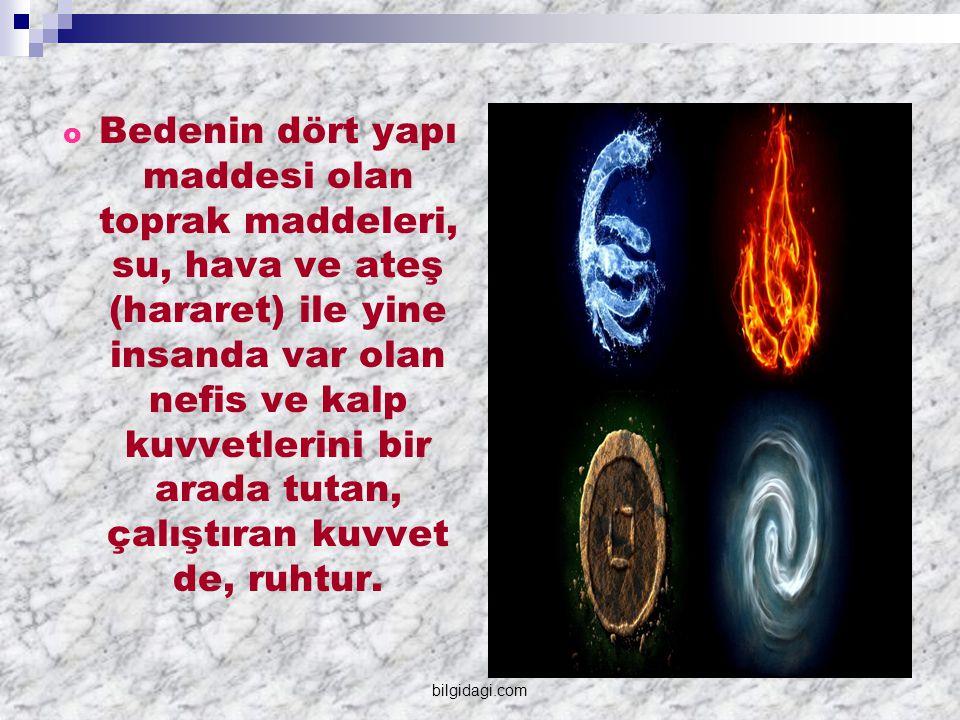  İnsanlarda olduğu gibi nebatların (bitkilerin) ve hayvanların da kendilerine göre ruhları vardır.