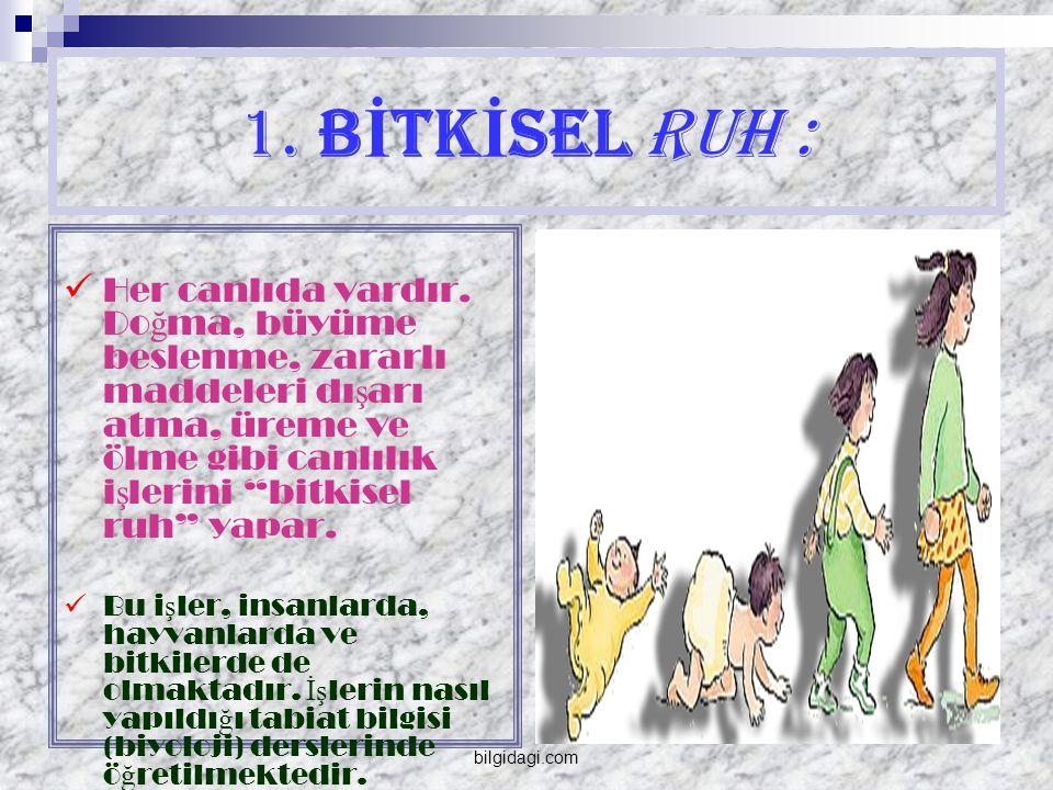 2.HAREKET KUVVETİ:  İki türlüdür.  Birincisi Şehevi kuvvettir  İkincisi, Gazabi kuvvettir.