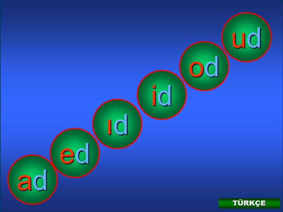 TÜRKÇE 1-A12 D d