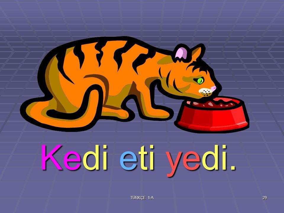 TÜRKÇE 1-A28 kedi