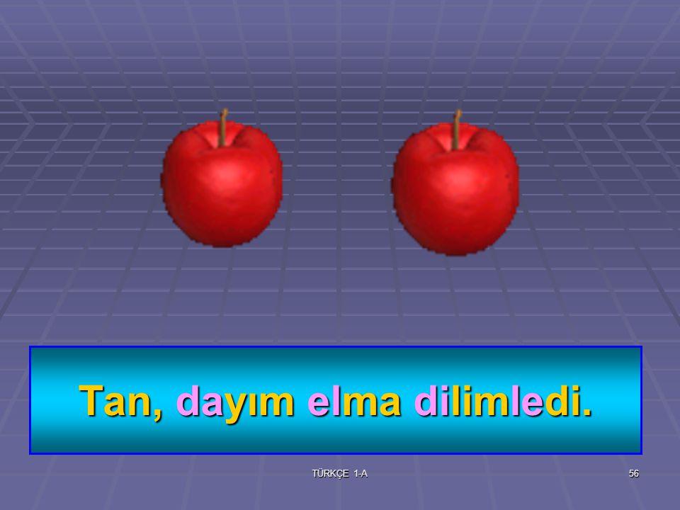 TÜRKÇE 1-A55 dilim