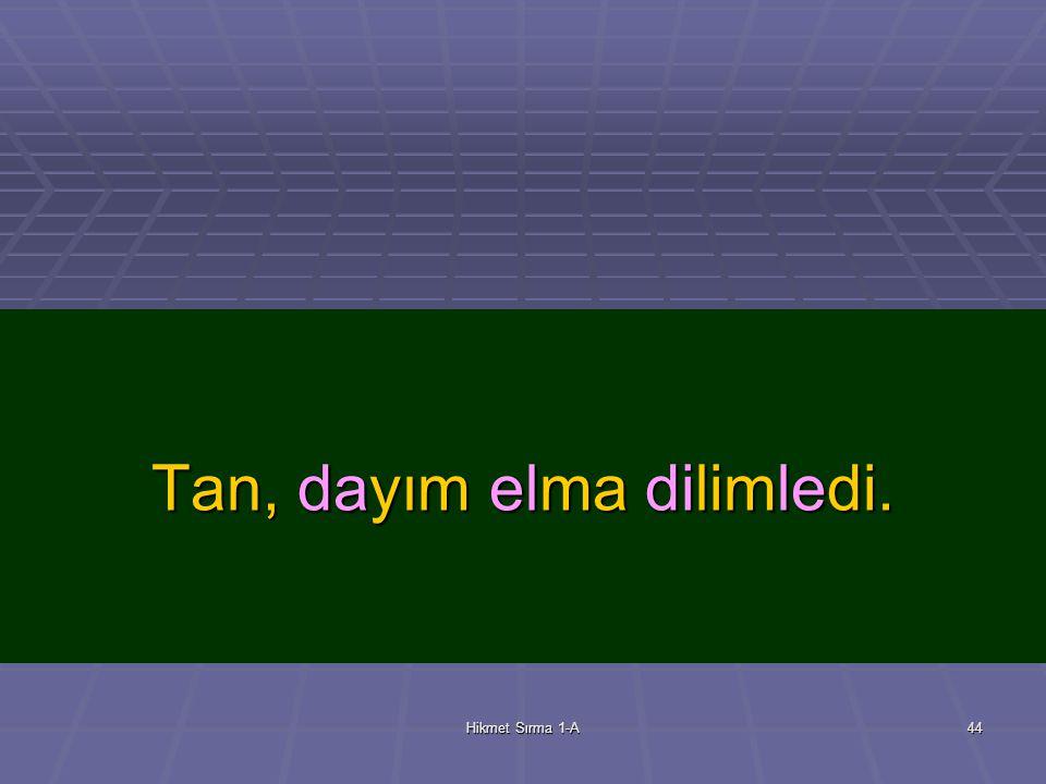 Hikmet Sırma 1-A43 dilim