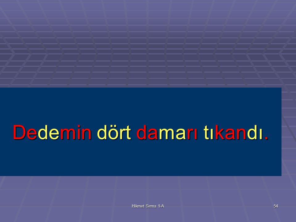 Hikmet Sırma 1-A53 damar