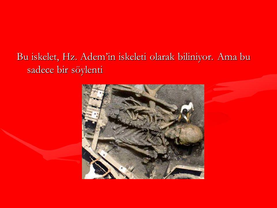 Bu iskelet, Hz. Adem'in iskeleti olarak biliniyor. Ama bu sadece bir söylenti
