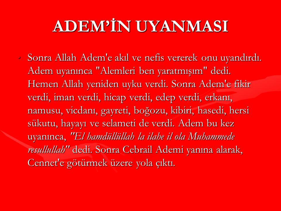 ADEM'İN UYANMASI Sonra Allah Adem'e akıl ve nefis vererek onu uyandırdı. Adem uyanınca