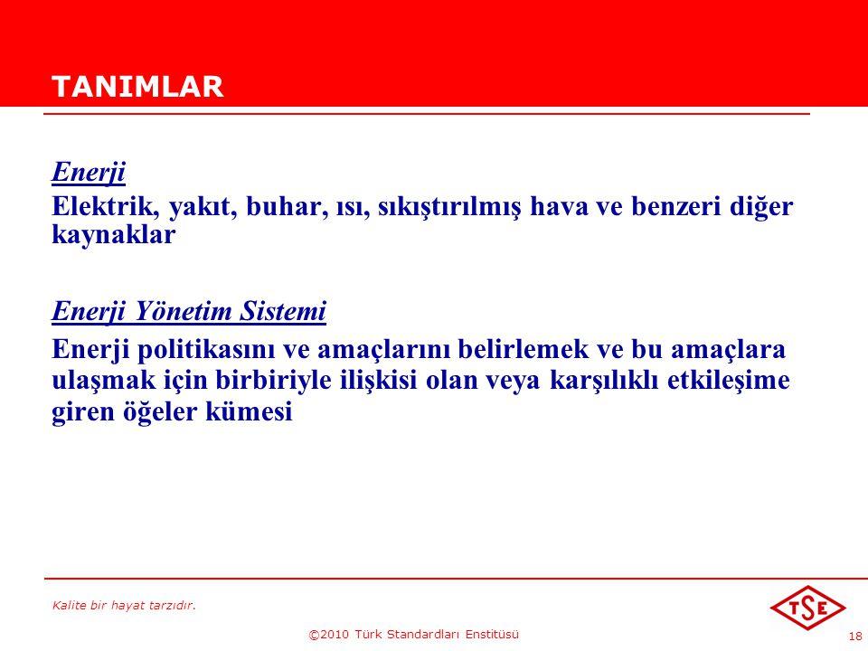Kalite bir hayat tarzıdır. ©2010 Türk Standardları Enstitüsü 18 TANIMLAR Enerji Elektrik, yakıt, buhar, ısı, sıkıştırılmış hava ve benzeri diğer kayna