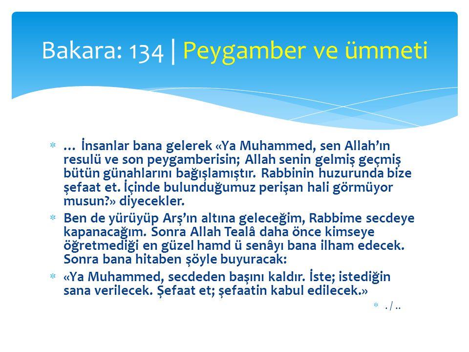  … İnsanlar bana gelerek «Ya Muhammed, sen Allah'ın resulü ve son peygamberisin; Allah senin gelmiş geçmiş bütün günahlarını bağışlamıştır. Rabbinin