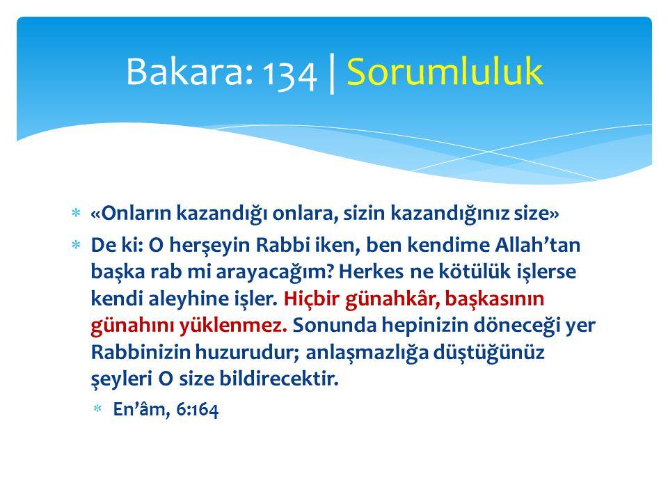  «Onların kazandığı onlara, sizin kazandığınız size»  De ki: O herşeyin Rabbi iken, ben kendime Allah'tan başka rab mi arayacağım? Herkes ne kötülük