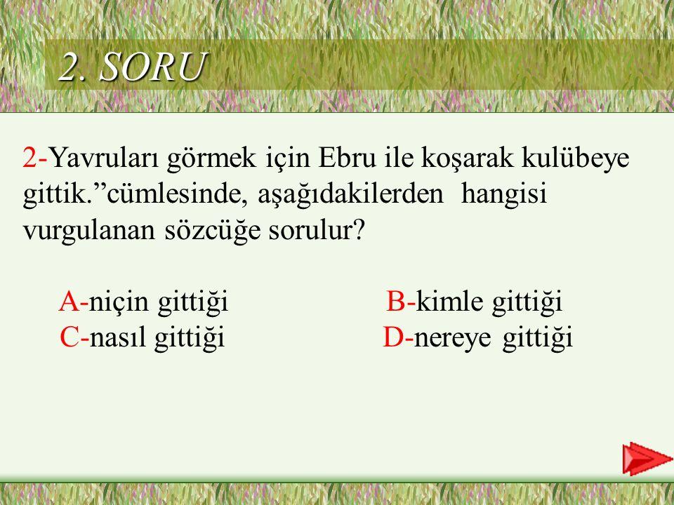 B Cevap 1
