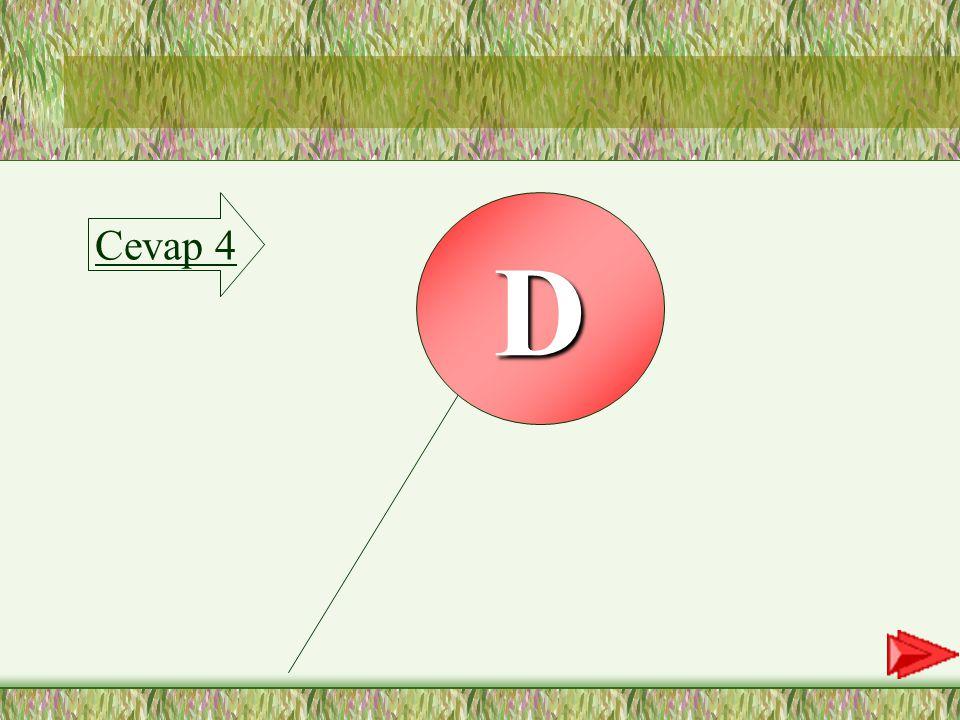 4.SORU 4-Merdivenlik sözcüğünün vurgulu hecesi aşağıdakilerden hangisidir.