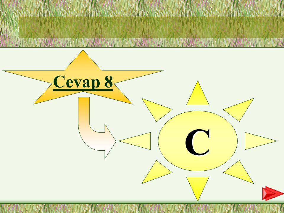 8.SORU 8-Aşağıdaki altı çizili sözcüklerden hangisi vurgulanmaktadır.