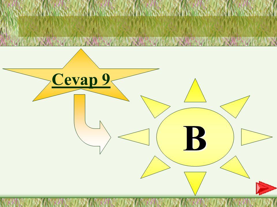 """9. SORU 9-""""Dün yemyeşil çimlerin üzerinde piknik yaptık."""" cümlesinde ilk hecesi vurgulanan sözcük hangisidir? A-piknik B-yemyeşil C-yaptık D-üzerinde"""