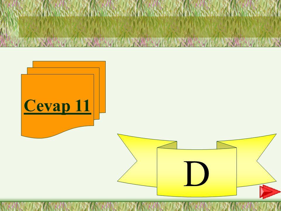 """11. SORU 11-""""Dedemin bahçelerinde bir sürü meyve var."""" cümlesinde altı çizili olan sözcüğün hangi hecesi vurgulanmaktadır? A-çe B-le C-rin D-de"""