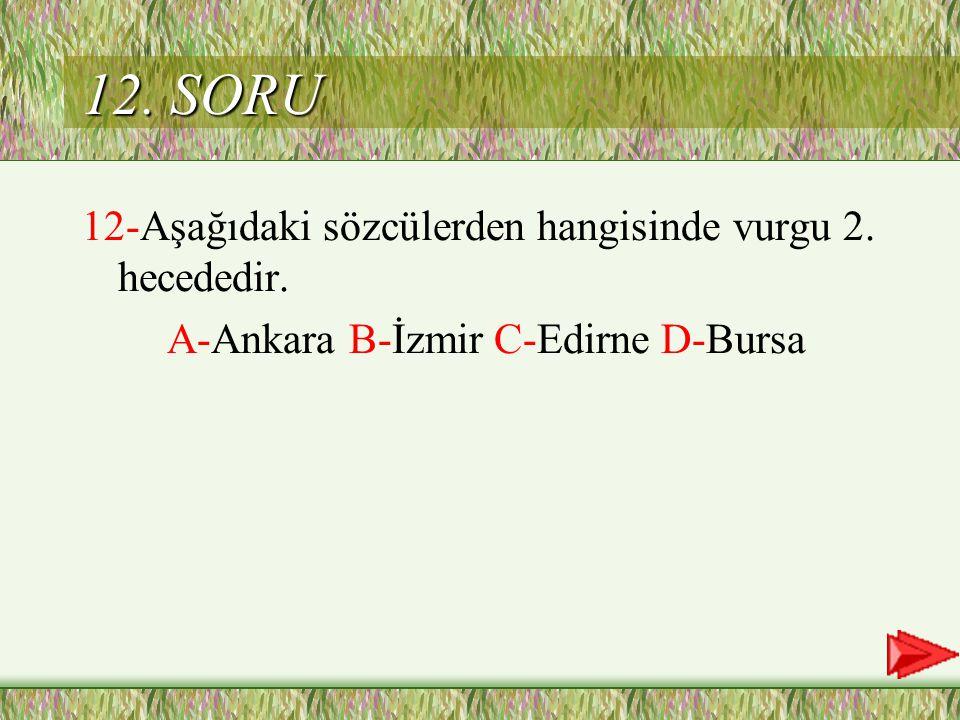 D Cevap 11