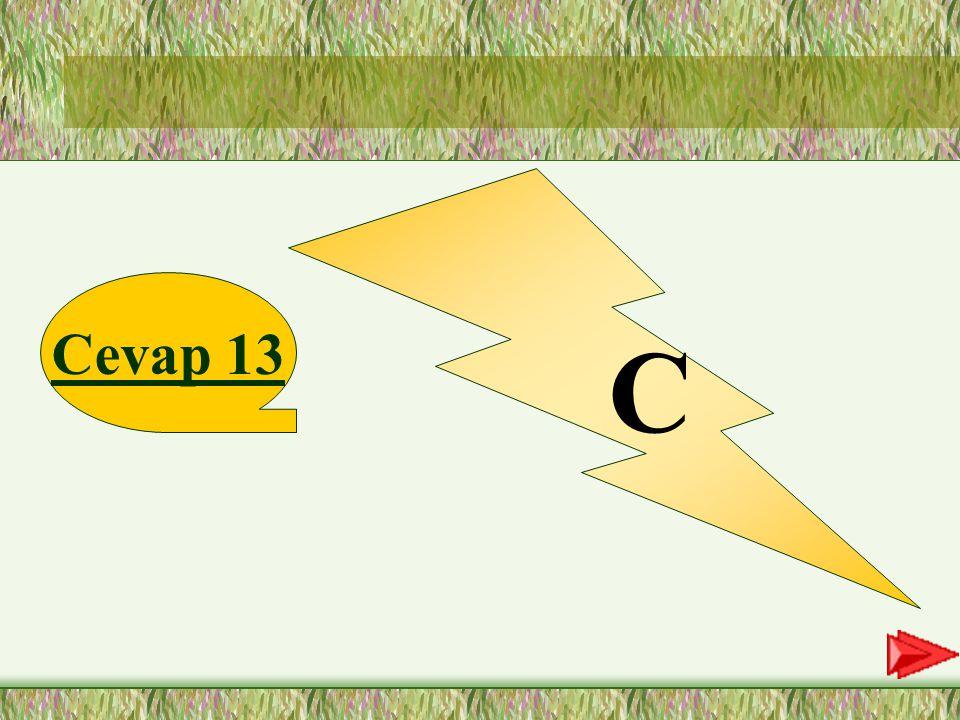 13.SORU 13-Aşağıdaki cümlelerden hangisinde vurgulanan sözcük nasıl sorusuna cevap verir.