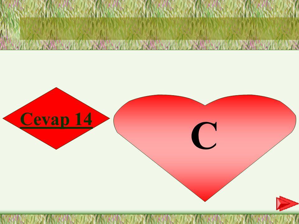 14.SORU 14- Kitapların faydası tamlamasında, aşağıdaki hecelerin hangisi vurgulu söylenmektedir.