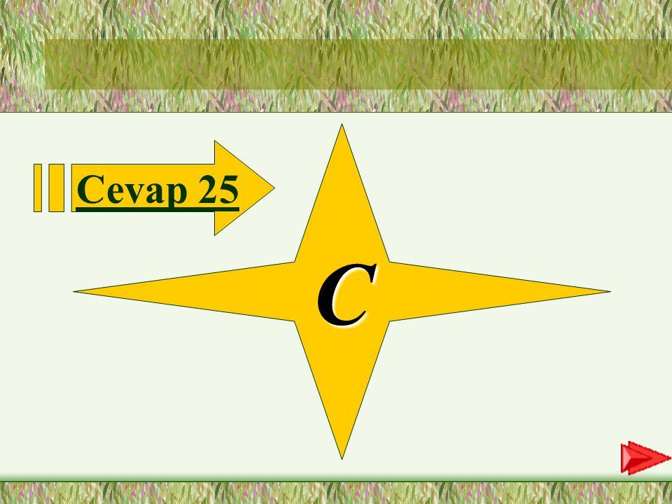 25.SORU 25-Aşağıdaki hecelerden hangisinde vurgu ilk hecededir.