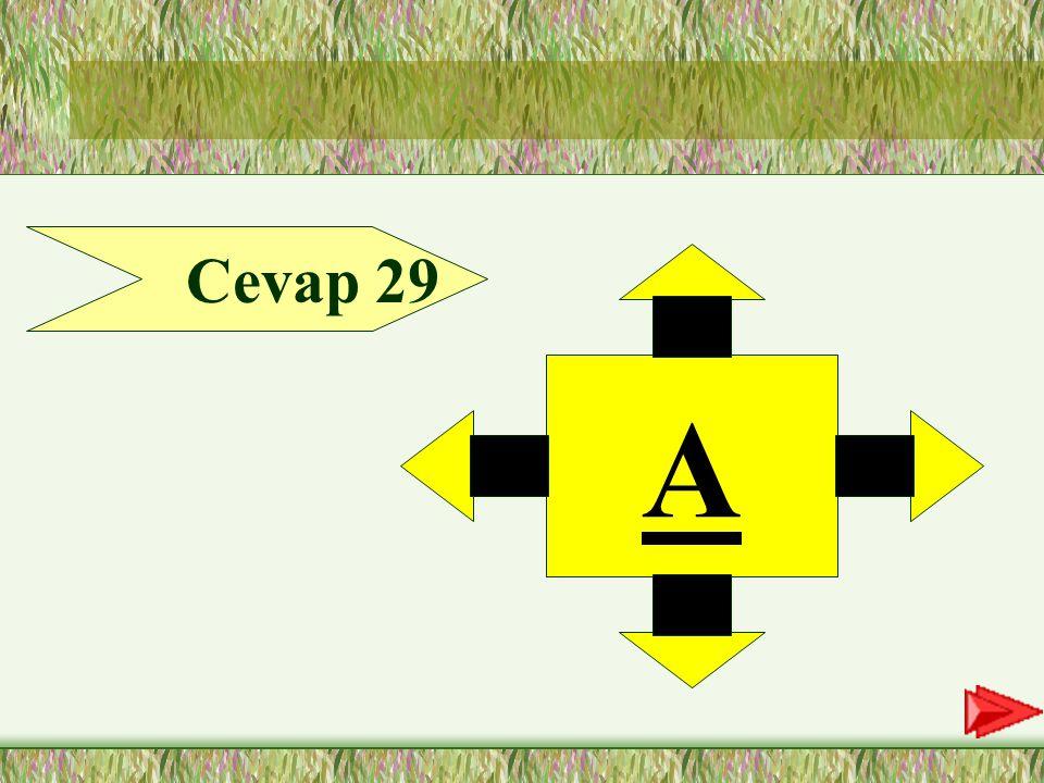29.SORU 29-Aşağıdaki cümlelerin hangisinde vurgulanan sözcük zarf tümleci değildir.