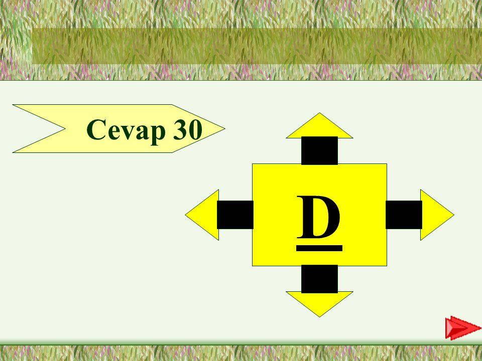 30.Soru 30-Aşağıdaki cümlelerin hangisinde zarf tümleci vurgulanmıştır.