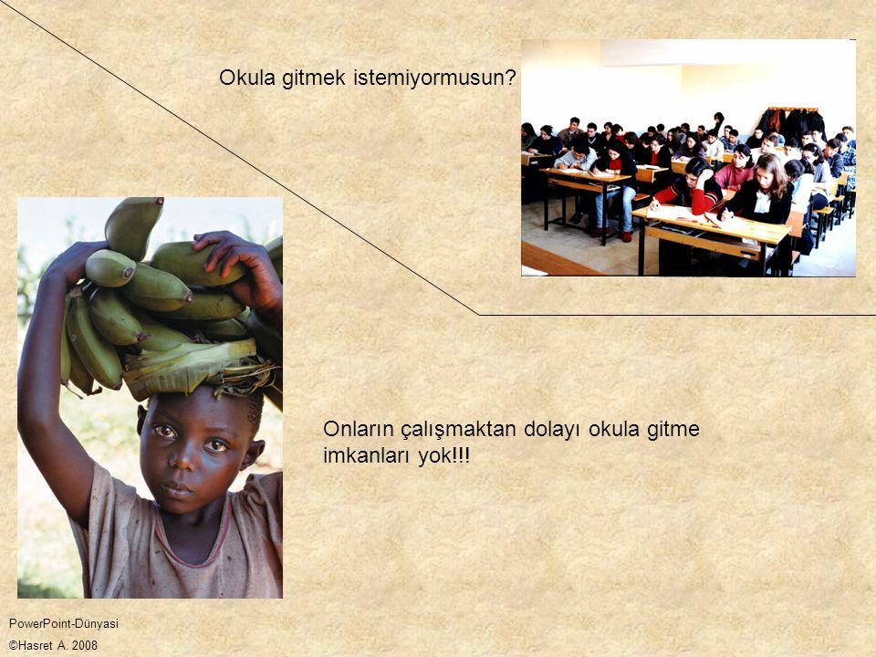 Onların çalışmaktan dolayı okula gitme imkanları yok!!! Okula gitmek istemiyormusun? PowerPoint-Dünyasi ©Hasret A. 2008