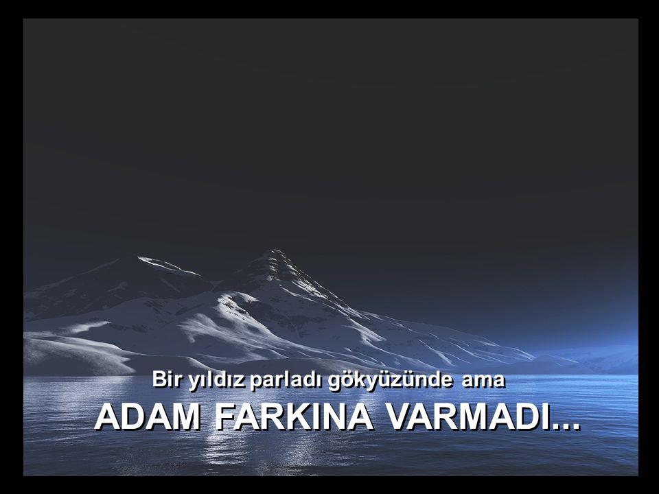 Bir yıldız parladı gökyüzünde ama ADAM FARKINA VARMADI...