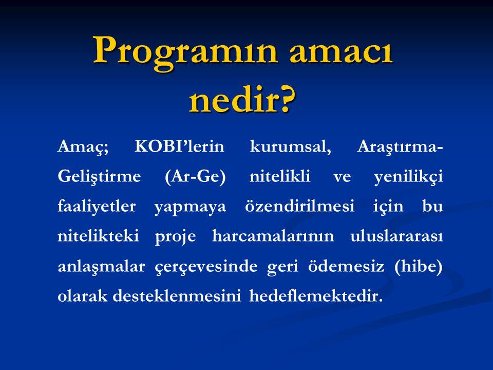 Programın amacı nedir.